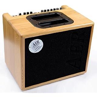 AER Compact 60 II Acoustic Guitar Amp (Natural Oak)
