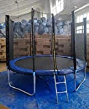 #3: Step Over Basketball Hoop Fitness Trampoline with Enclosure Net and Poles Safety Pad,Ladder for Kids and Adults, 10ft/Height 305cm (Blue)