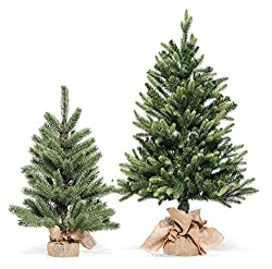 Xone Pinetto Norvegia, piccolo albero di Natale realistico da 60 cm