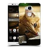 Just Phone Cases Schutz Hülle TPU Case Schutzhülle Silikon Tasche Dünn Transparent // V00004287 Katze liegend auf Holzbrettern // Huawei Ascend Mate 7