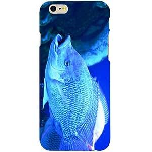 Casotec Blue Fish Design Hard Back Case Cover for Apple iPhone SE
