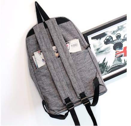 Diswa Classical Unisex Backpack for Women Nylon Child School Bag Special Use for Picnic 30 * 40 * 16 cm (Gray) Image 3