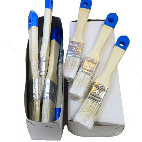 ROTIX-9116 12 x Flachpinsel 25 mm Aqua-Lackierpinsel auch für Lasur und Beize 12er-Pack
