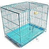 Jainsons Metal Dog Cage (Blue, 24-inch )