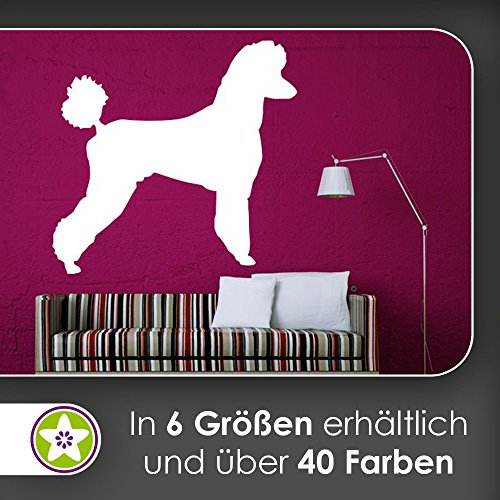 hauptsachebeklebt KIWISTAR Pudel Silhouette Wandtattoo in 6 Größen - Wandaufkleber Wall Sticker -