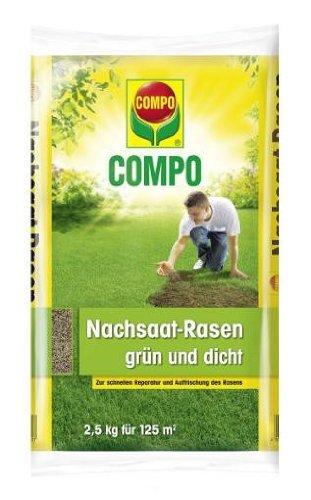 COMPO Nachsaat-Rasen grün & dicht 2,5 kg | Rasenreparatur für 125m²