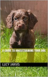 A guide to housetraining your dog (1)