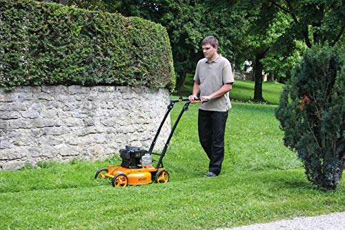 Infahs As motor As 420 Lawn Mower with Mulching Capabilities (Multicolour)