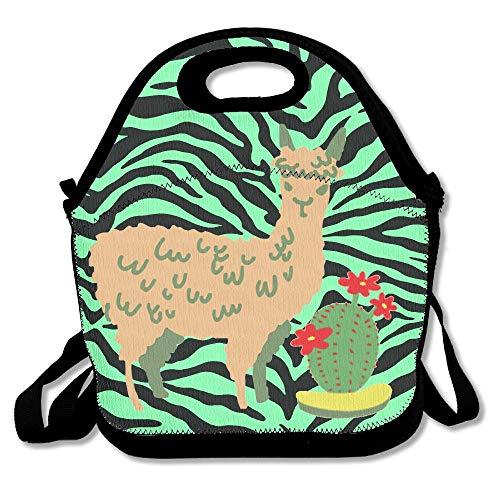nchtasche Lunchtasche für Reisen, Schule, Picknick, Lunchbox für Männer und Frauen und Kinder ()