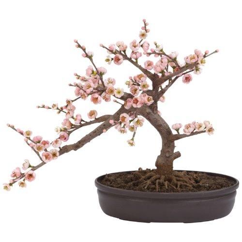 Nearly Natural Fast Natur 4764Cherry Blossom Bonsai Künstlicher Weihnachtsbaum, Pink