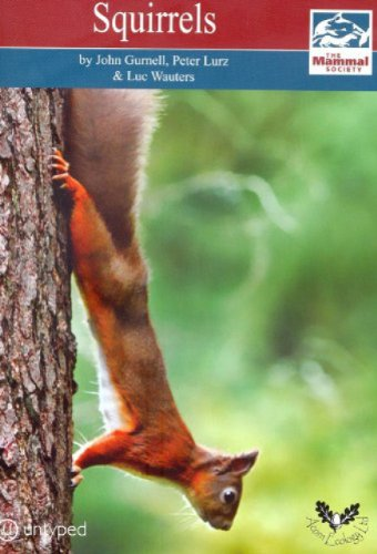 Squirrels (Mammal Society Series) (Mammal Society Species Series)