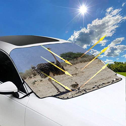 Parasole Suv Struzzo africano nel parco naturale Parco auto Copertura antigelo parabrezza 57.9x46.5 pollici (147cmx118cm) per la maggior parte dei veicoli Proteggi il parabrezza e il tergicristallo D