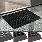 Floordirekt Repräsentative Fußmatte Profi Brush - Testurteil Sehr Gut - Schmutzfangmatte mit Alu Rahmen für außen und innen Größen (Schwarz, 60 x 90 cm)