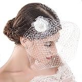 handcess Hochzeit bridcage Schleier mit Kamm Blumen Fascinator Netz Kurz Rouge Schleier für Brides (eine Stufe Schleier)