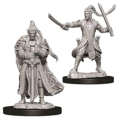 WizKids D&D Nolzur's Marvelous Miniatures - Male Elf Paladin