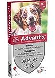 Advantix Chien moyen 10 à 25 kg- 6 pipettes antiparasitaires 2,5 ml