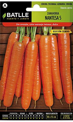 Batlle Gemüsesamen - Möhre Nantaise 5 Ausw. Cilindro (7500 Samen)
