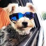 Homesupplier Cani da compagnia moto occhiali da sole impermeabile antivento protezione UV per piccoli cani Doggy cucciolo e gatti occhiali–Vet raccomandato protezione degli occhi