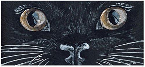 Schwarz Katzen Augen PVC Wand Tür Schild Fun Novelty Cute Geburtstag Weihnachten Home Kitchen
