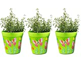 Pentole, set di 3 pentole colorate, verde, vasi di erbe per interni/esterni