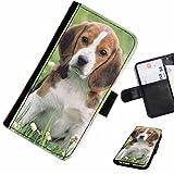 Hairyworm- Hunde Sony Xperia SP (C5302, C5303, C5306) Leder Klapphülle Etui Handy Tasche, Deckel mit Kartenfächern, Geldscheinfach und Magnetverschluss.