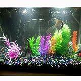 Aquariumpflanzen QHJ, 6 Stück, Kunstpflanzen, aus Kunststoff, Schildkröte, Landschaft, zufällige Farbe.
