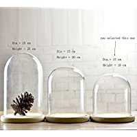 Glass Cloche Bell Jar Dome With wooden Tray Diameter 15 cm (Small)