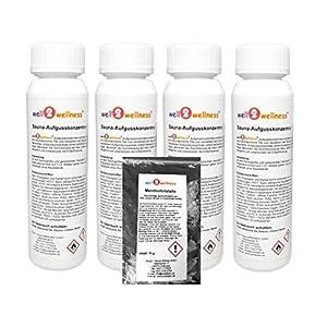 well2wellness® Saunaaufguss Set 4 x 125 ml 'Klassik 2' mit Eukalyptus, Latschenkiefer, Minze, Finnischer Winter + gratis 10g Mentholkristalle