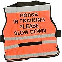 Equisafety Horse en la formación de aire chaleco naranja grande