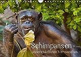 Schimpansen - unsere nächsten Verwandten (Wandkalender 2018 DIN A4 quer): Porträts von Schimpansen - unseren nächsten Verwandten (Monatskalender, 14 ... [Kalender] [Apr 01, 2017] Brodde, Ulrich