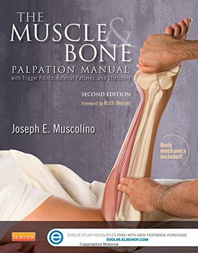 The Muscle and Bone Palpation Manual with Trigger Points, Referral Patterns and Stretching, 2e by Joseph E. Muscolino DC (2015-03-25)