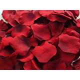 1000pcs Pétales de Rose en Soie pour Mariage