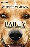 Bailey - Ein Freund fürs Leben: Ich gehöre zu dir - Buch zum Film