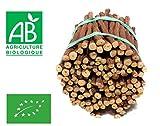 Bâtons de racine de Réglisse Bio 1 kg (environ 150 bâtons)