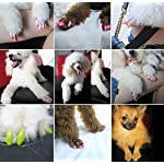 Crasy Shop 20Pcs/Lot Soft Silicon Pet Dog Cat Nail Caps Kitten Claws Paws Control Nail Protector Cover with Adhesive… 12