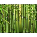 Fototapeten Bambus Grün 352 x 250 cm Vlies Wand Tapete Wohnzimmer Schlafzimmer Büro Flur Dekoration Wandbilder XXL Moderne Wanddeko - 100% MADE IN GERMANY - Runa Tapeten 9097011a