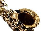 Die Feder für Saxophon Mikrofon mit micro-goose flexibel Nacken durch Myers Tonabnehmer ~ Das sehen in Aktion. Kopieren und Kleben?: myerspickups. COM