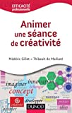 Animer Une Seance de Creativite by Gillet (June 01,2012) - Dunod (June 01,2012)