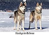 Huskys im Schnee (Wandkalender 2018 DIN A4 quer): Portraits von Sibirischen Huskys im Winter (Monatskalender, 14 Seiten ) (CALVENDO Tiere) [Apr 13, 2017] Zeller & Christian Kiedy, Katrin