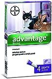 ADVANTAGE SPOT ON 80 per gatti/conigli oltre 4 kg. 11214