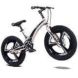 AI-QX Vélo Enfant pour Garcons et Filles de 5-7 Ans  Bicyclette Enfant 16-20 Pouces Cruiser avec Freins ,Gold,20''