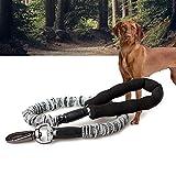 Angel Hundeleine, dehnbar, für große und mittelgroße Hunde, Teddy, Golden Retriever