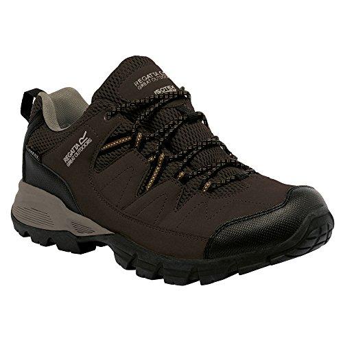 Regatta Holcombe Low, Chaussures de Randonnée Basses Homme Briar/DkDenm