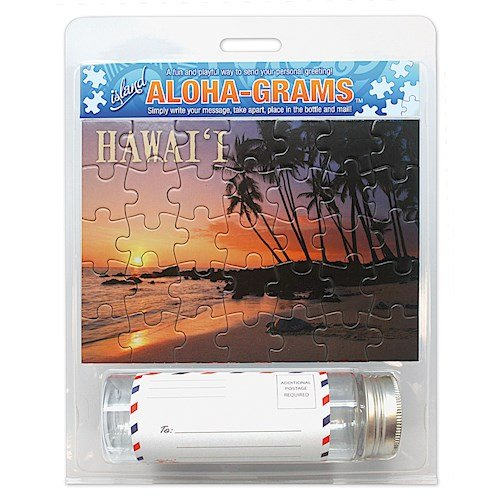 Insel aloha-grams Schildkröte Sunset Puzzle Postkarte