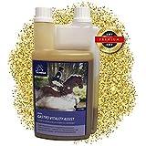 EMMA Gastro Liquid fürs Pferd I Pferdefutter mit Bierhefe I prebiotisch I intakte Darmflora I Vitamin-Booster für Energie Plus B-Vitaminen, C, E, Biotin, Kalzium, Folsäure, Zink 1 L