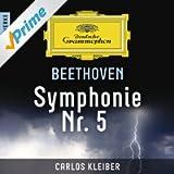 Beethoven: Symphonie Nr. 5 - Meisterwerke