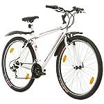 MultiBrand PROBIKE PRO 27.5, Zoll, 480mm, Mountainbike, Unisex, 21 Gang Shimano, (weiß grau-rot, 29 zoll)