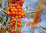 Reife Früchte (Tischkalender 2018 DIN A5 quer): Lassen Sie sich mit Obst, frisch von Baum und Strauch, durch das Jahr begleiten. (Monatskalender, 14 ... Natur) [Kalender] [Apr 01, 2017] LianeM, k.A.