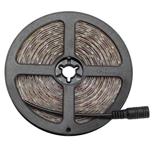 WenTop Led Strip 5m Wasserdichte Led Streifen Lichter SMD 3528