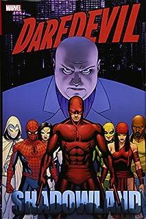 Daredevil: Shadowland Omnibus (130291037X) | Amazon Products